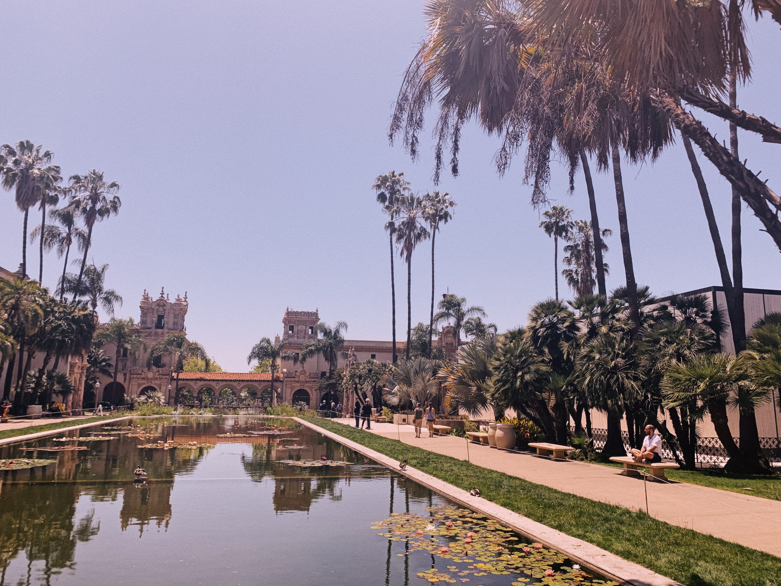 balboa park san diego usa america california garden picnic